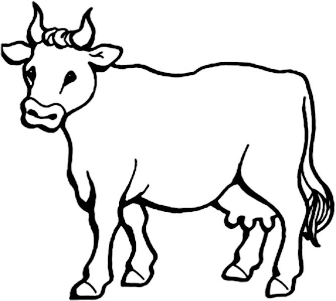 Pin By Nene Beautee On Cowboy Birthday Party Cow Coloring Pages Animal Coloring Pages Cow Cartoon Drawing