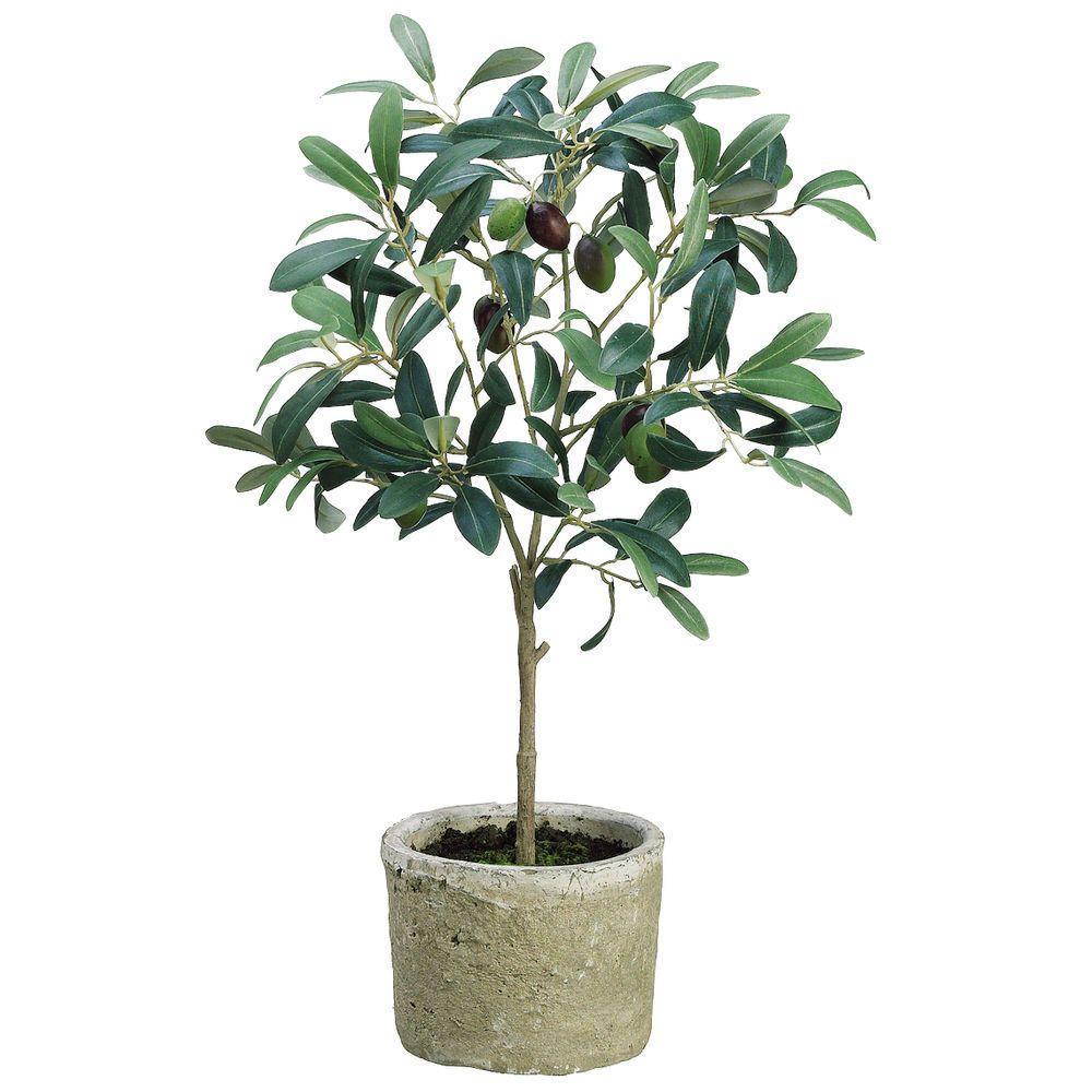 "Artificial Olive Tree in Pot 19 1/5""H Artificial garden"