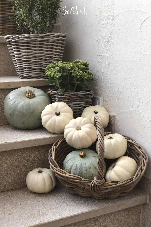 Photo of Die schönsten Ideen für deine Herbstdeko!