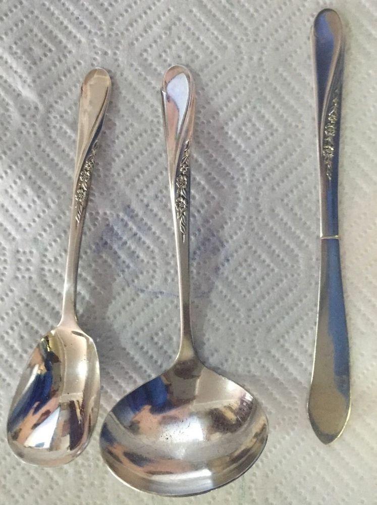 William rogers son spring flower pattern sugar spoon butter knife william rogers son spring flower pattern sugar spoon butter knife ladle wmrogersson mightylinksfo