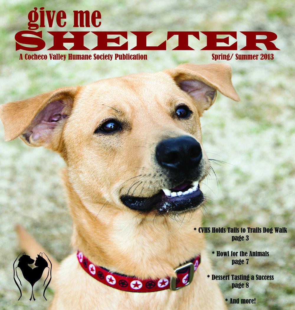 Summer 2013 Shelter Newsletter Dogs, Humane society dogs