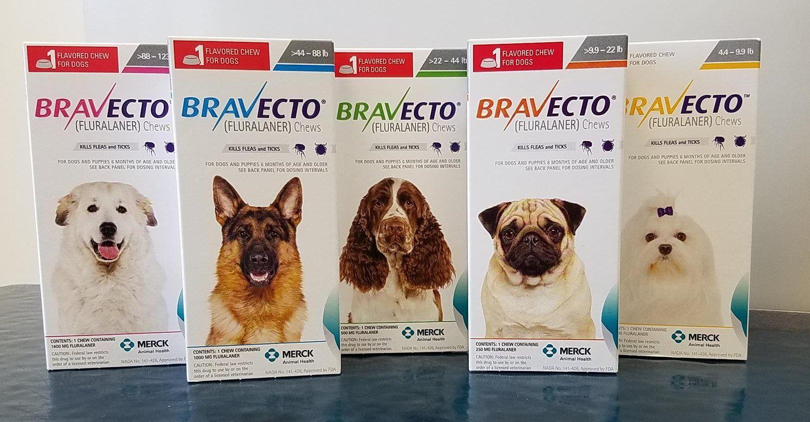 Affordable pet meds starting at 37 for Bravecto! Pet
