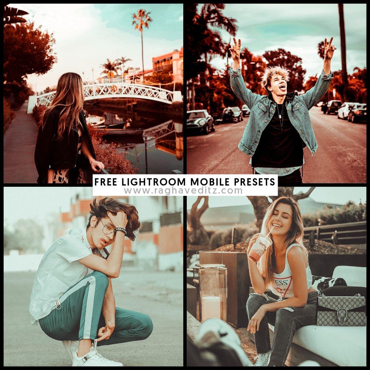 free Lightroom Mobile Presets (Lightroom Presets) download | taysiir
