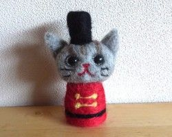 Cat soldier's gray cat