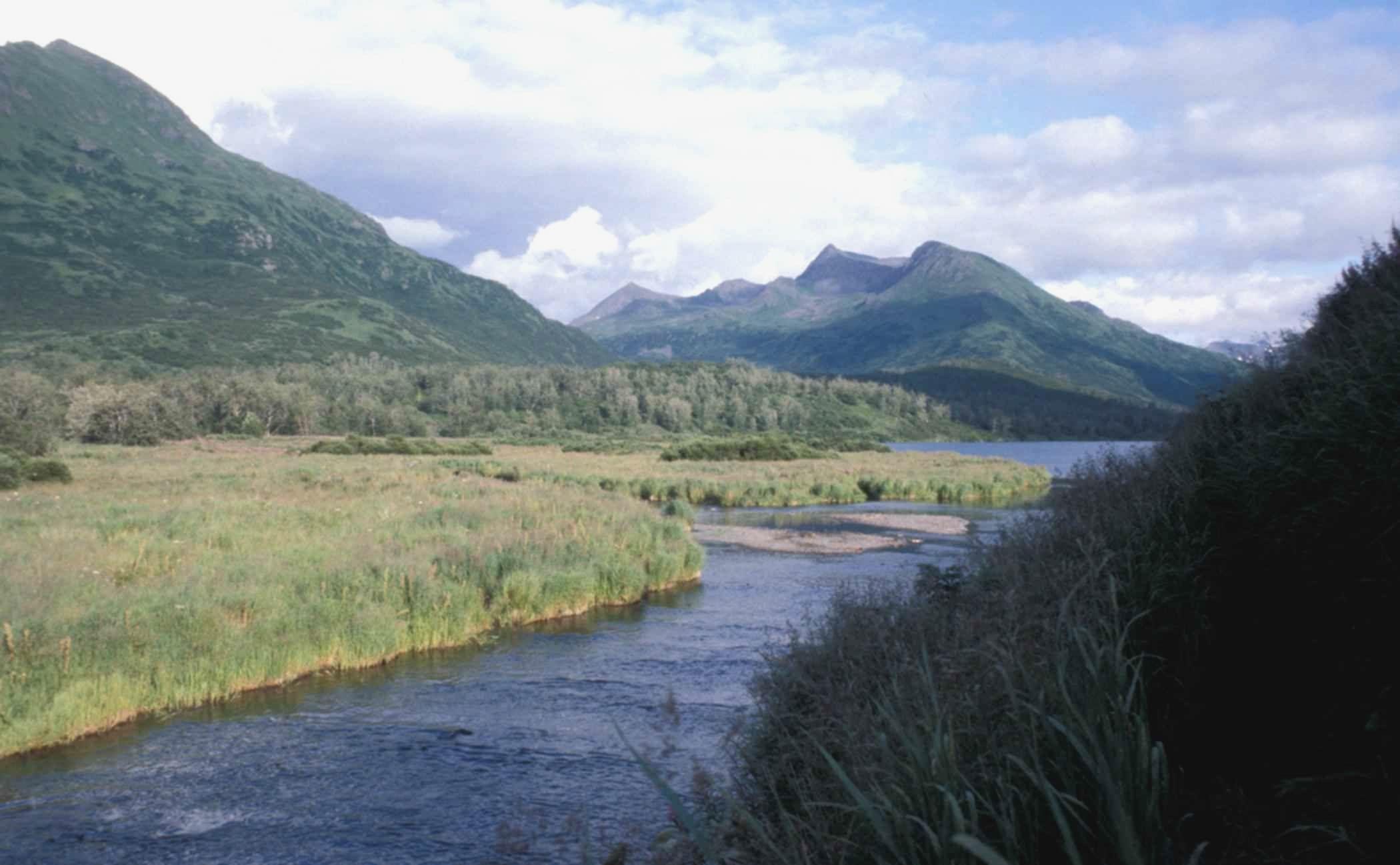 Kodiak island, Alaska, Gulf of alaska