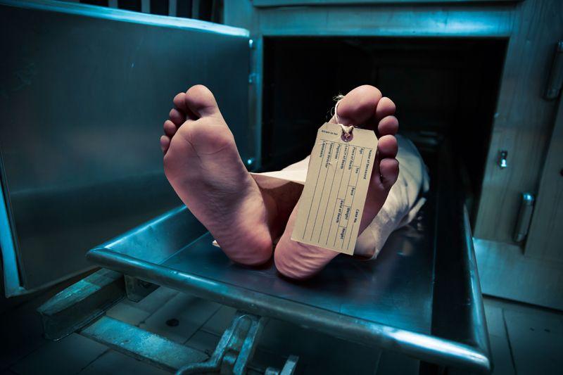 News-Tipp: Buch - Pathologisch: Die Darstellung vom Tod in Krimis - http://ift.tt/2jotYeJ #nachricht