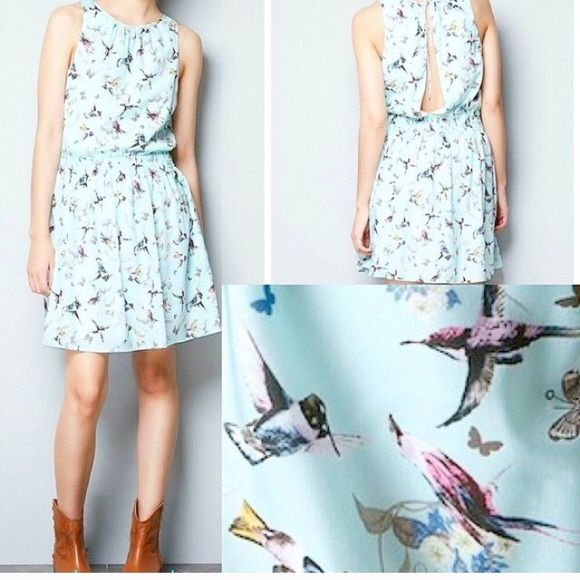 Gorgeous pastel dress by Zara Its a perfect dress. The color is so beautiful and the pattern of birds,flowers and butterflies certainly gives it a girly feel. Only flaw is in the second picture. It has a low back and it had a tiny snag on the stitches. I think it can be fixed. Zara Dresses