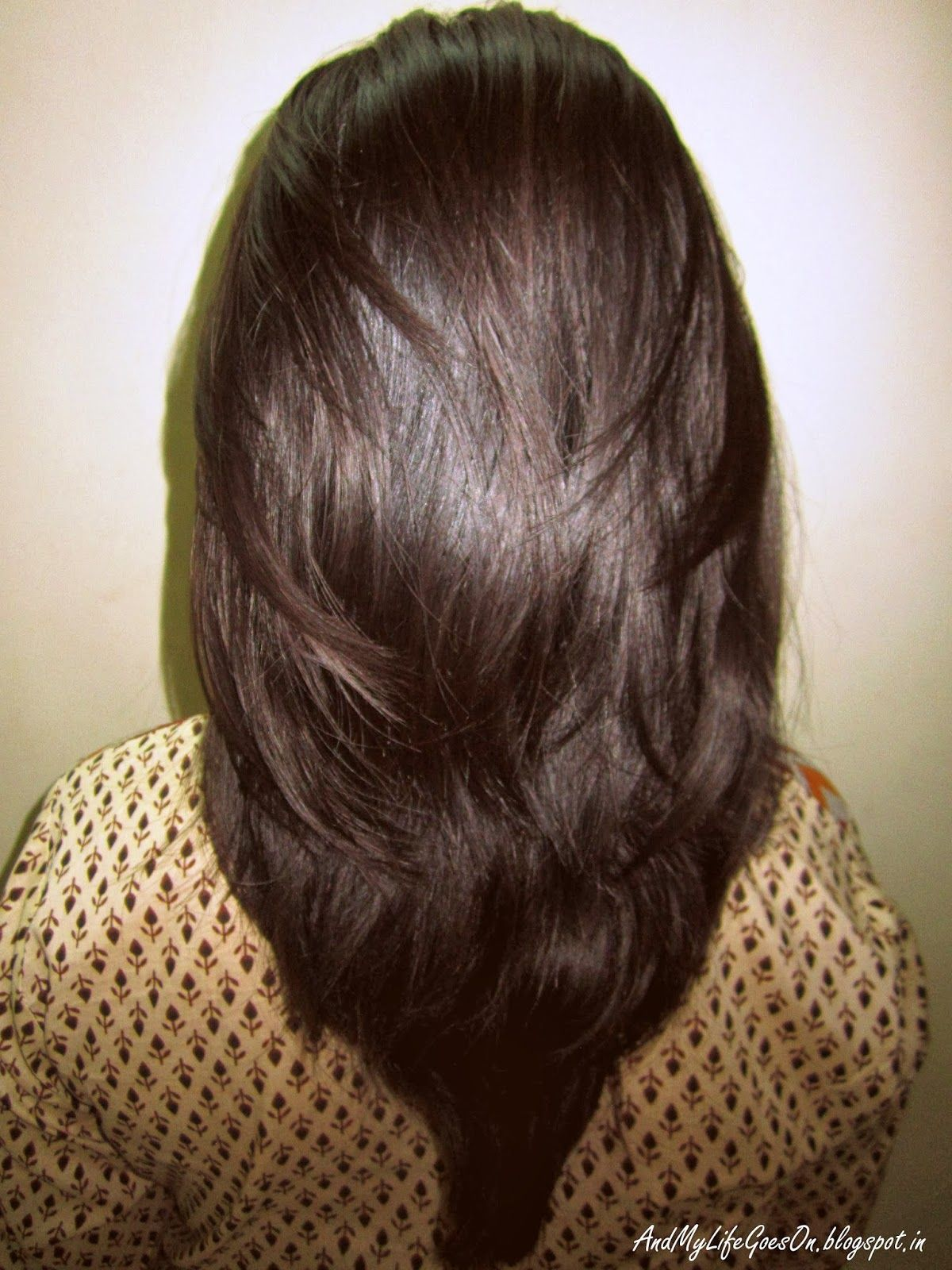Step Cut Hairstyle For Straight Hair Back View Hair Ideas Hair