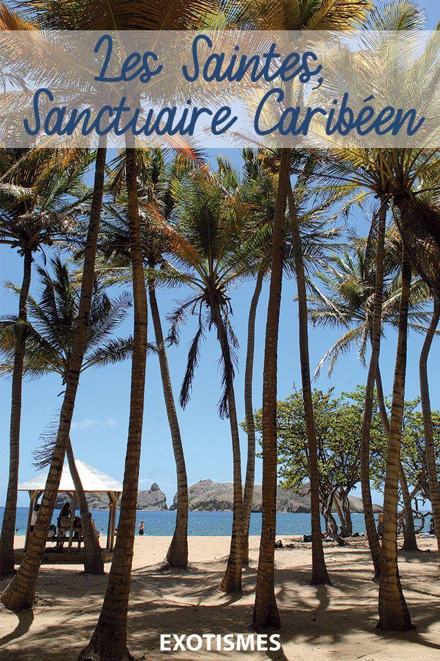Les Saintes, sanctuaire caribéen Caribéen, Archipel