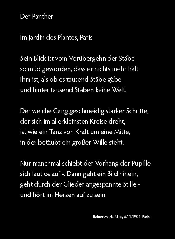 Der Panther Von Rainer Maria Rilke Gedichte Schön