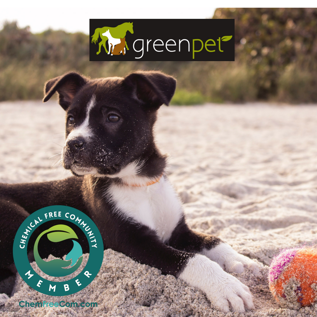 Your one-stop shop for natural, non-toxic products for animals ... | Dog Food For Allergies And Pancreatitis