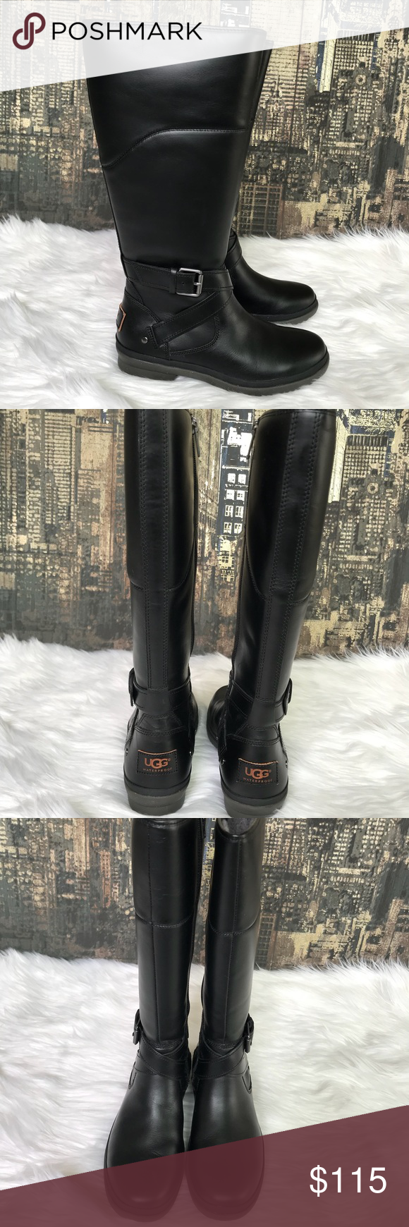 301760b110c ✨🆕UGG Evanna Leather Riding Boots in Black✨👢 ✨🆕UGG Evanna ...