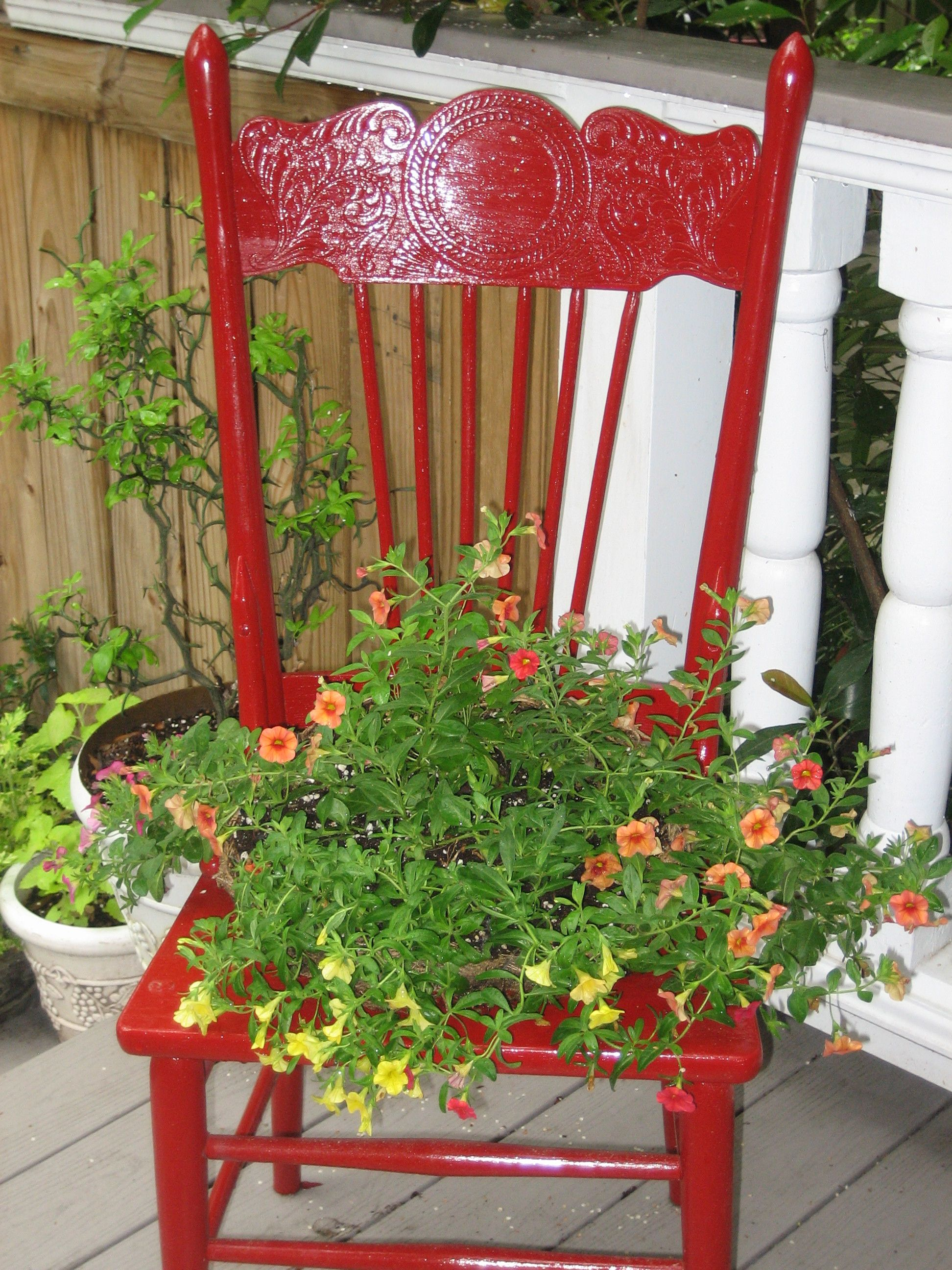 Beautiful Old Chair Planter