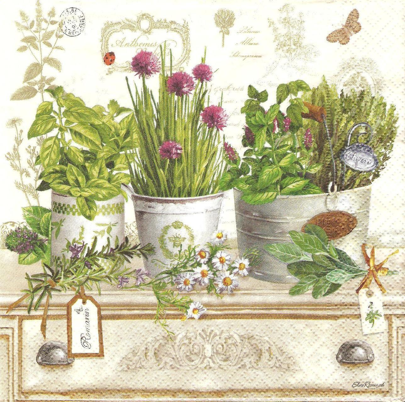 resultado de imagen para cuadros vintage para cocina para imprimir vintage pinterest plants and decoupage