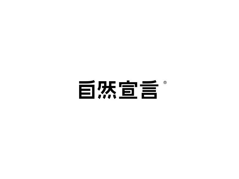 Manifesto Typography Chinese Font Design Logo Logotype Typography Typeface Logo