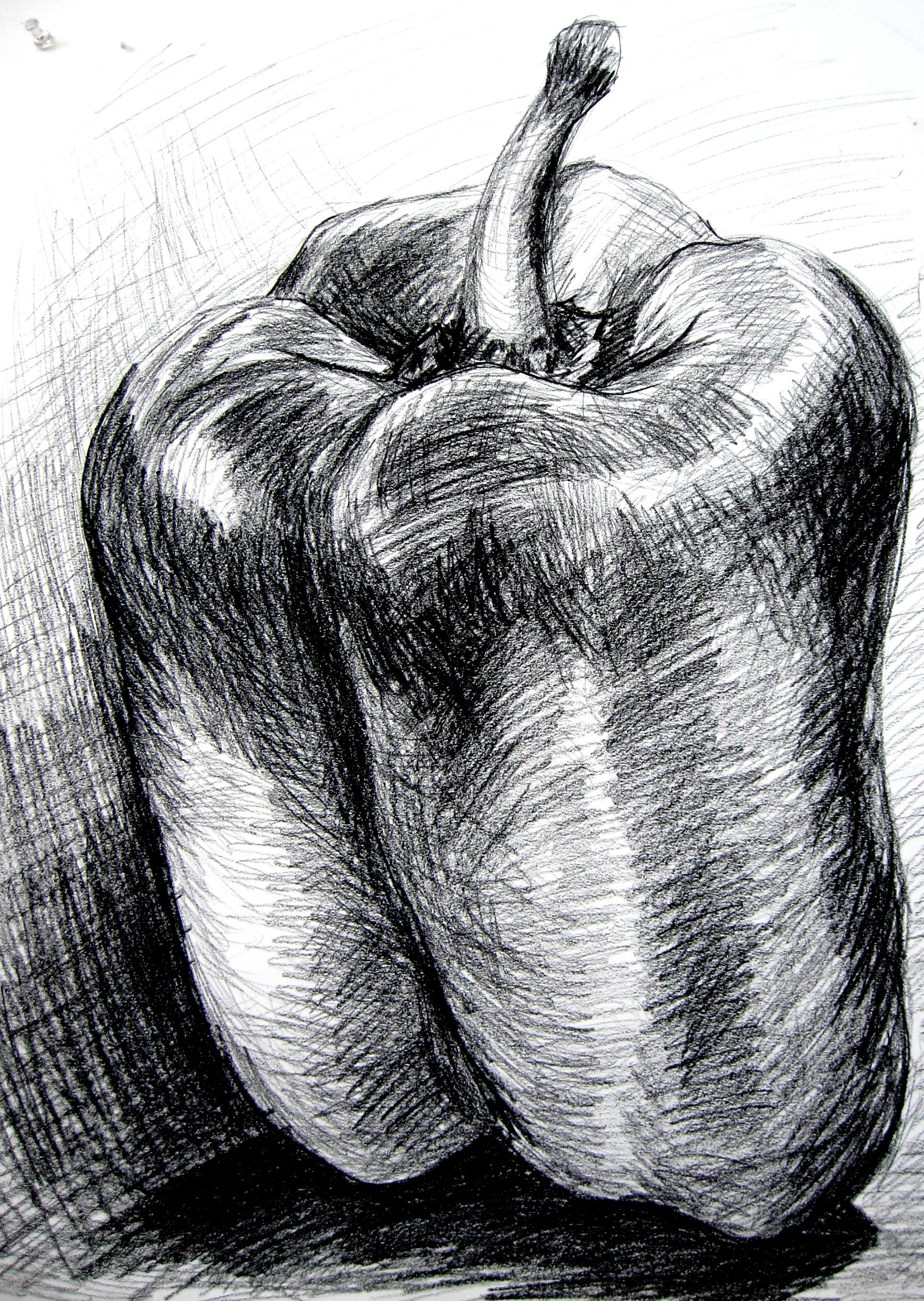 Bell pepper charcoal note the different directions of the marks and lines to suggest