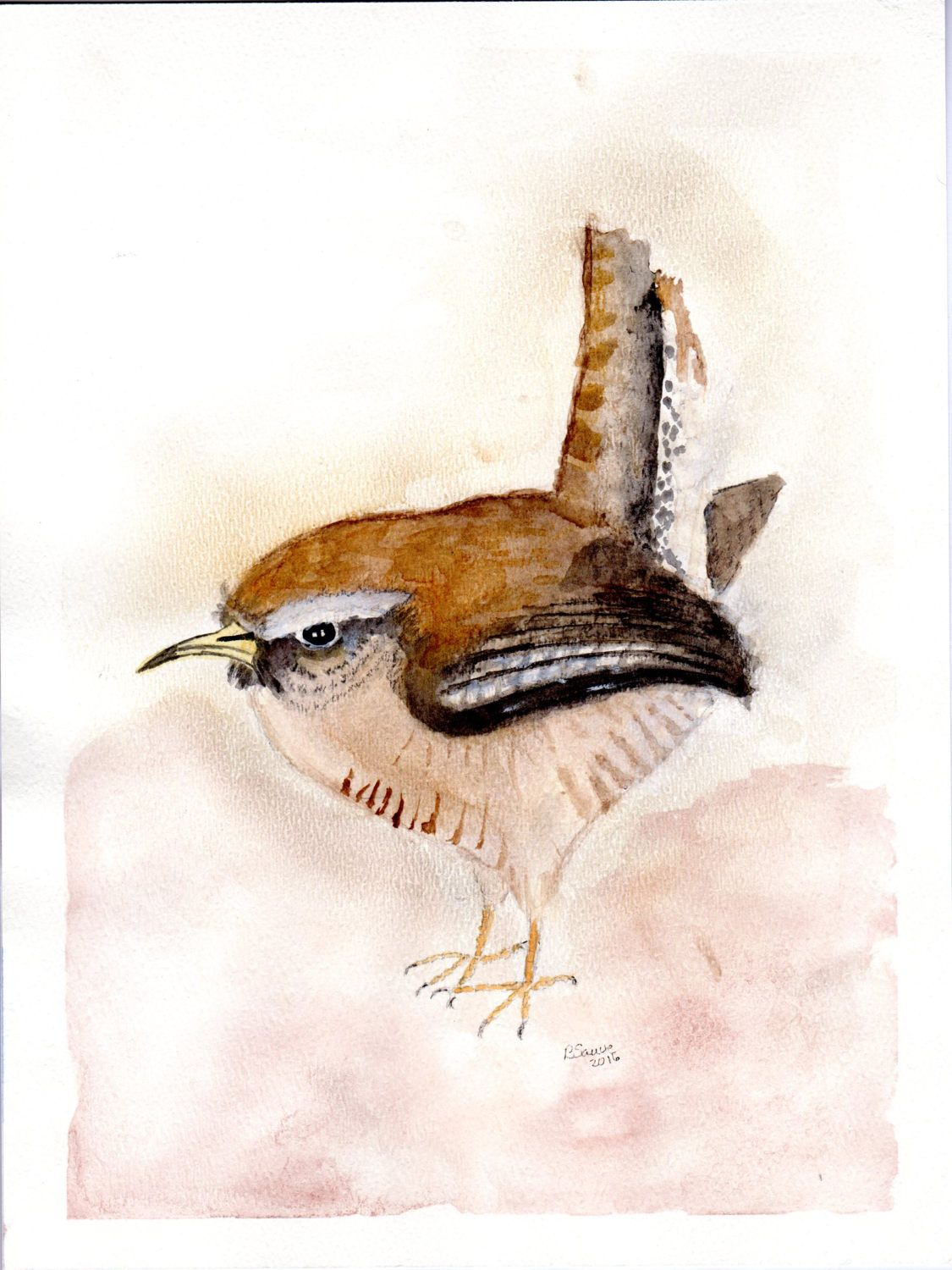 Watercolor Original Painting Of House Wren On 9 X 12 Heavy