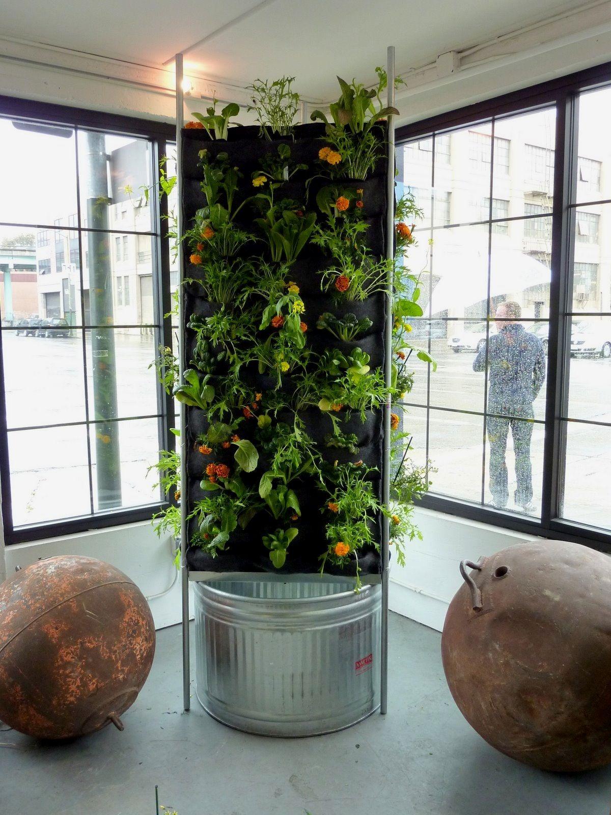 10 Easy Indoor Garden ideas for your interior enjoyment Indoor