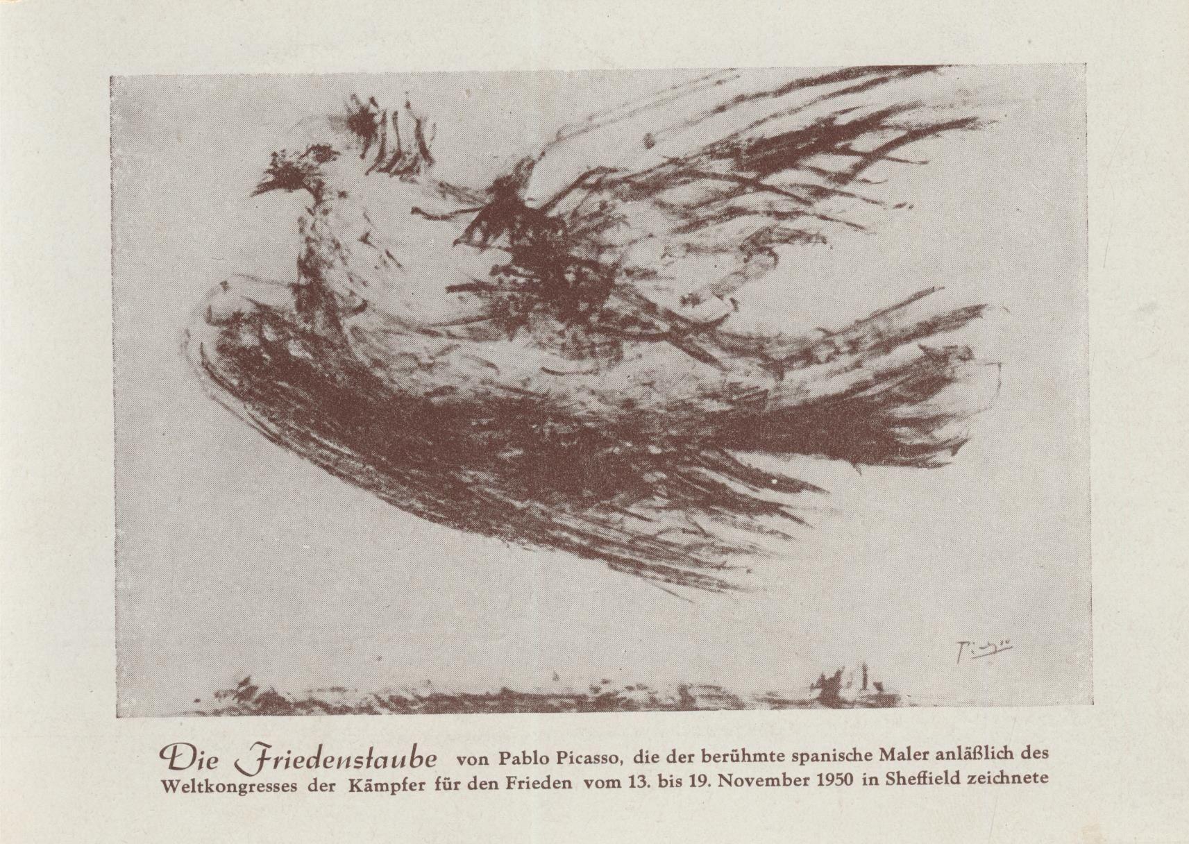 Picasso Friedenstaube  Vgel Insekten Blumen  Pinterest