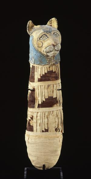 Momie de chat, matière organique, lin, cartonnage, Basse Époque (664-332 av. J.-C.) ou époque ptolémaïque