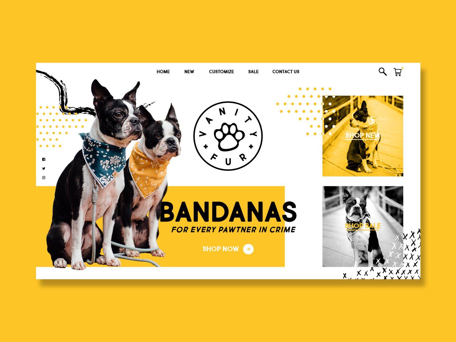 Vanity Fur Dog Design Instagram Design Web Design Inspiration