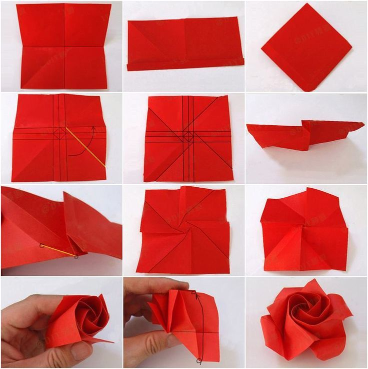 Paper Rose | Craft Ideas & D.I.Y | Pinterest | Origami, Craft and ...