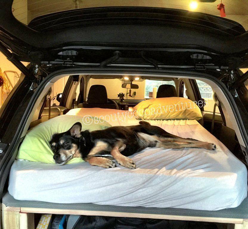 Diy Suv Drawer Car Camping Storage Suv Camping Car Bed