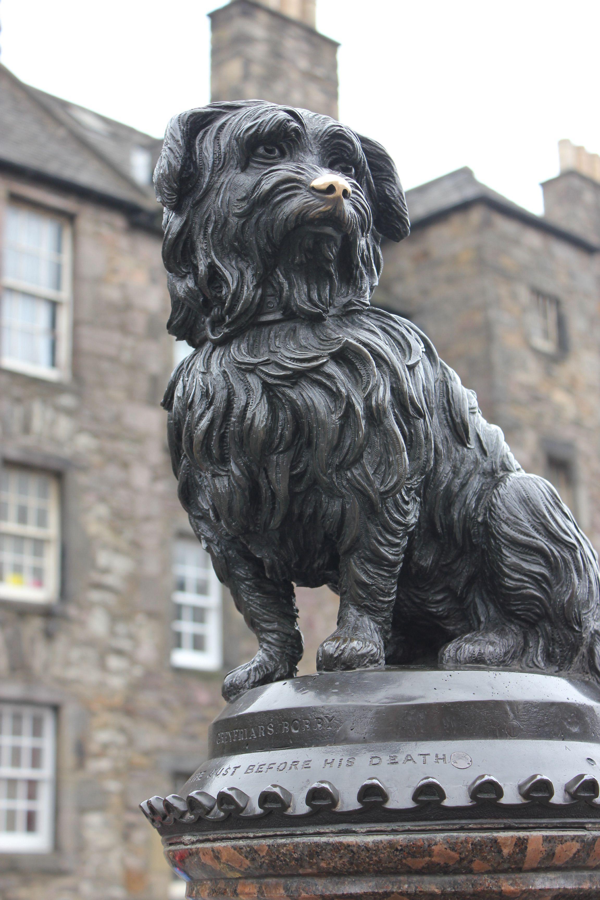 Edinburgh Midlothian Dog Friendly Apartments Romantic City Edinburgh