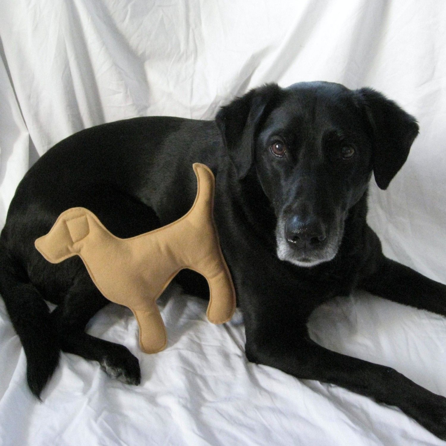 Yellow Lab Dog Toy for Dogs $10 00 via Etsy
