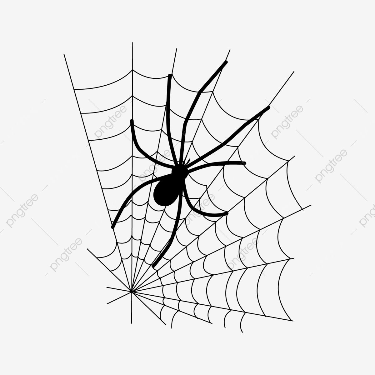 Halloween Black Big Spider And Fine Web Element Pattern Black Big Spider Fine Spider Web Png And Vector With Tran Big Spiders Light Background Images Spider