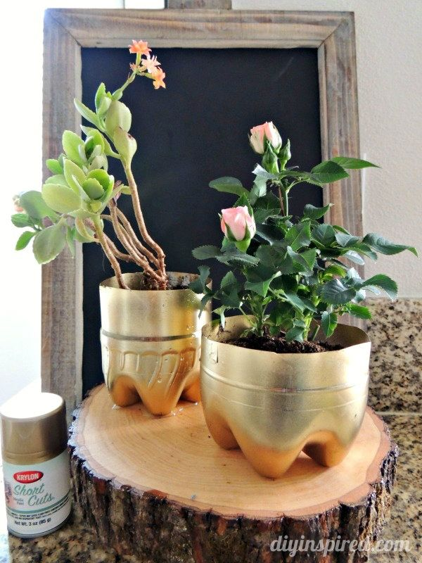 Recycled Plastic Bottle Plant Pots
