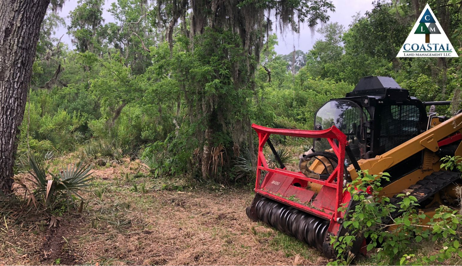 Land Clearing Houston Give Us A Call 979 373 8062 Land Clearing