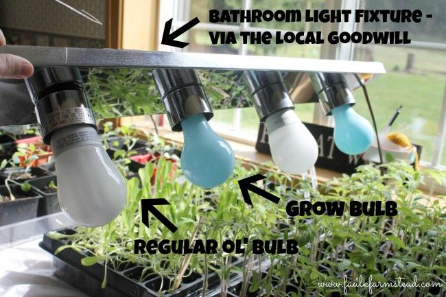 Account Suspended Grow Lights For Plants Grow Lamps Seedlings