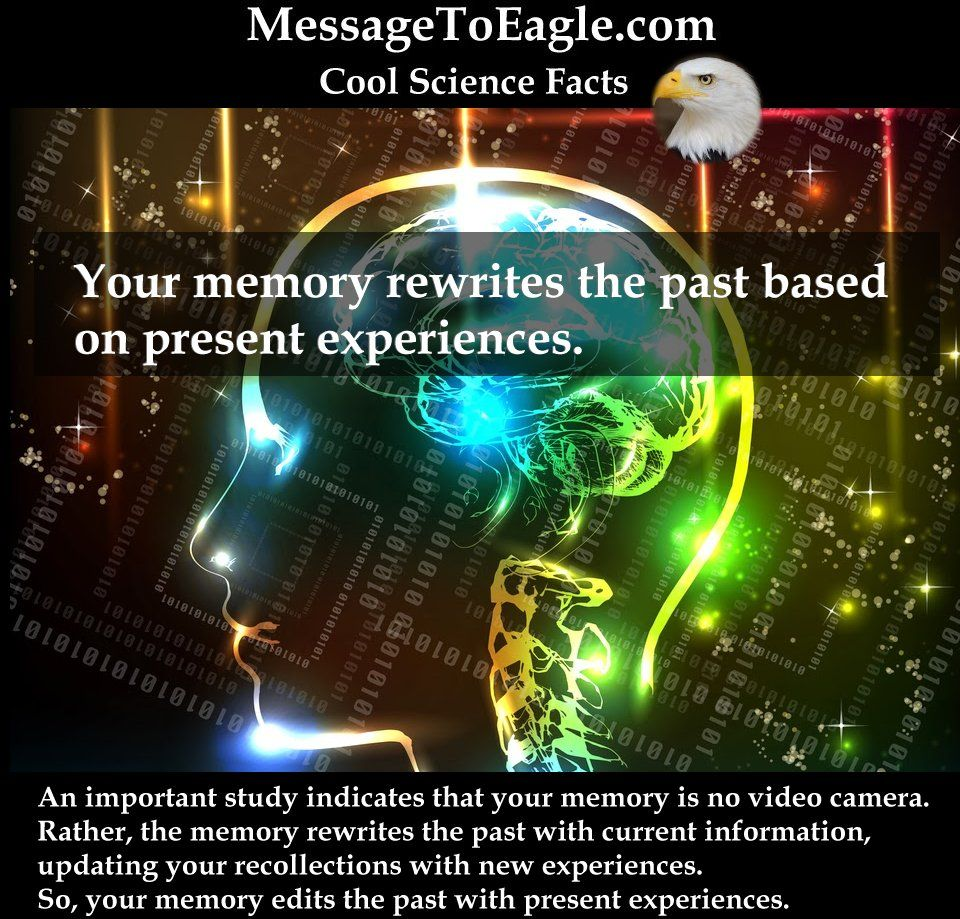 Science Facts Brain: Your Memory Rewrites The Past Based On Present Experiences