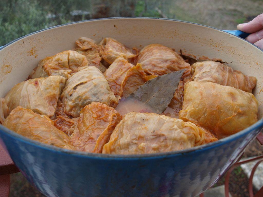 Croatian Cooking Sarma Recipe (Stuffed Cabbage Rolls