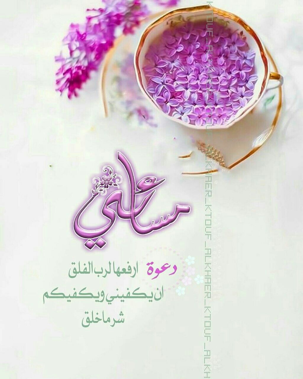 Pin By Ekleel Ward On مساء الخير Evening Greetings Good Evening Islamic Pictures