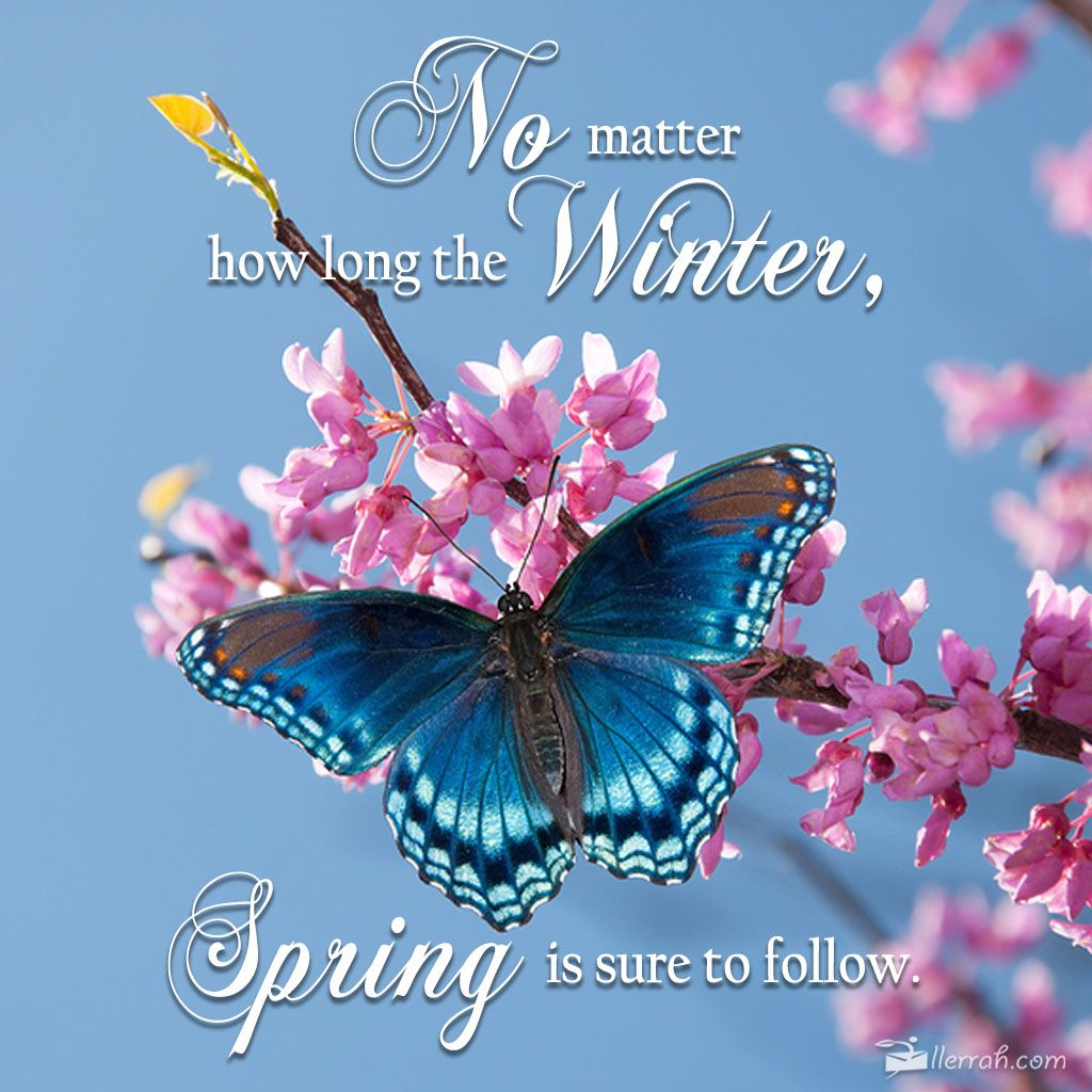 No Matter How Long The Winter, Spring Is Sure To Follow