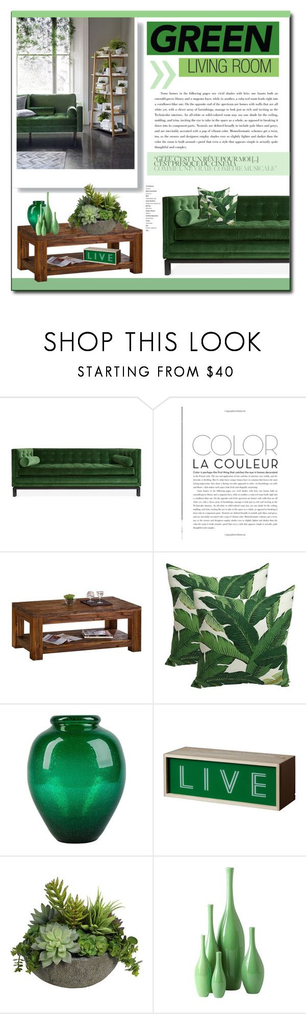 Green living room green living rooms and polyvore