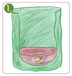 Pflanzanleitung für Kartoffel-Pflanzsack #kräutergartenpalette