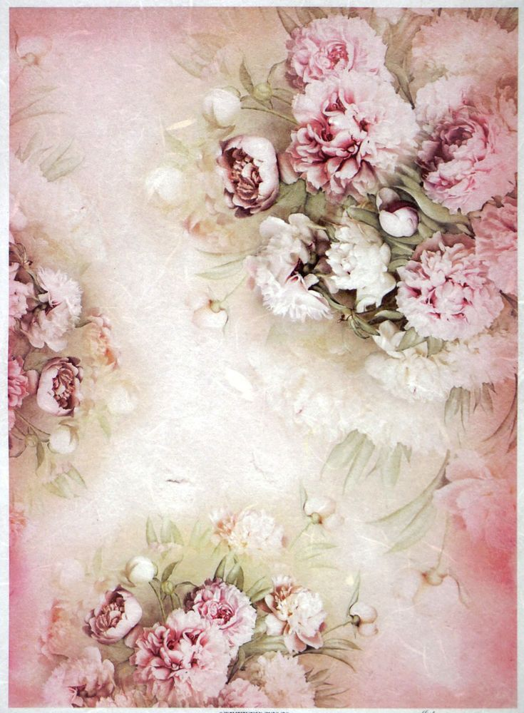 Rice Paper Rose And White Peonies For Decoupage