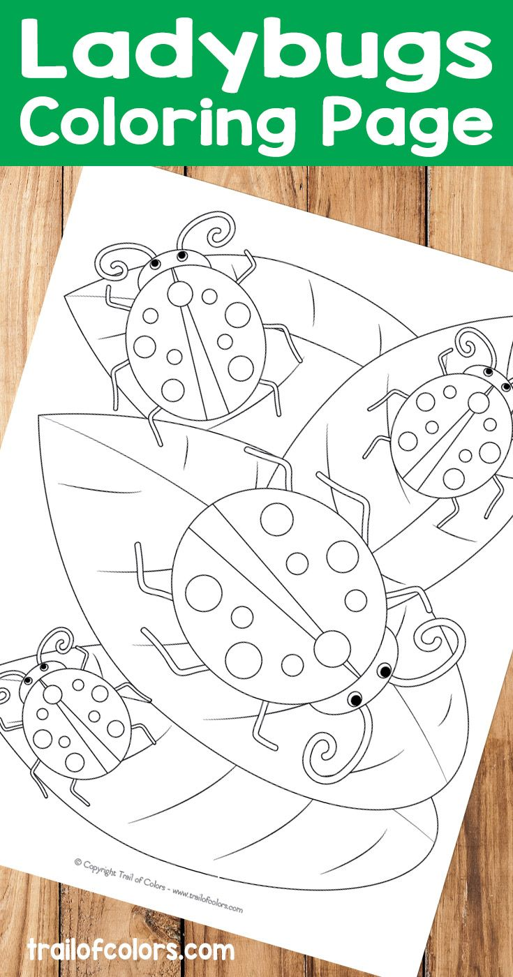 do you have a kid at home who likes bugs then this ladybugs coloring page is perfect for them and the best part is that this coloring page is free