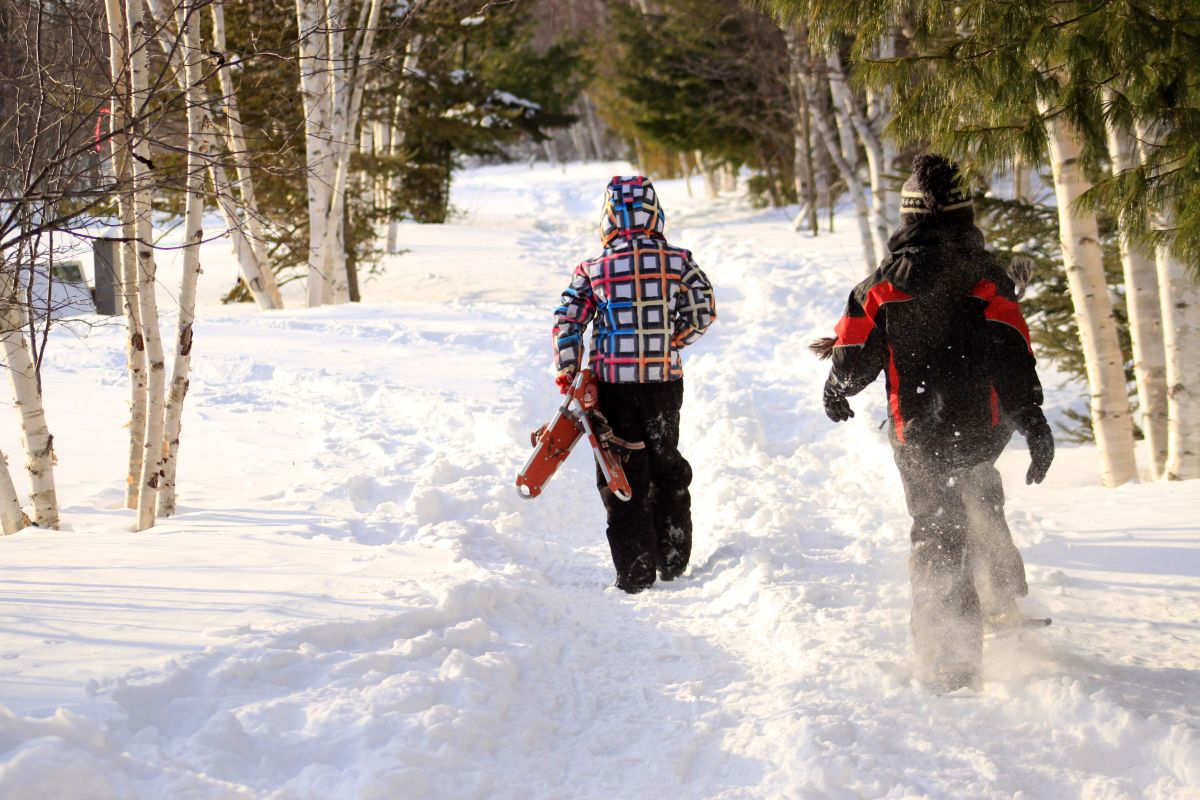 Top Trails for Snowshoeing & Winter Hiking (With images