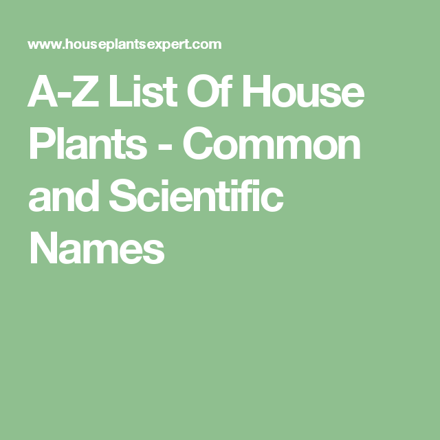 A-Z List Of House Plants - Common and Scientific Names ...