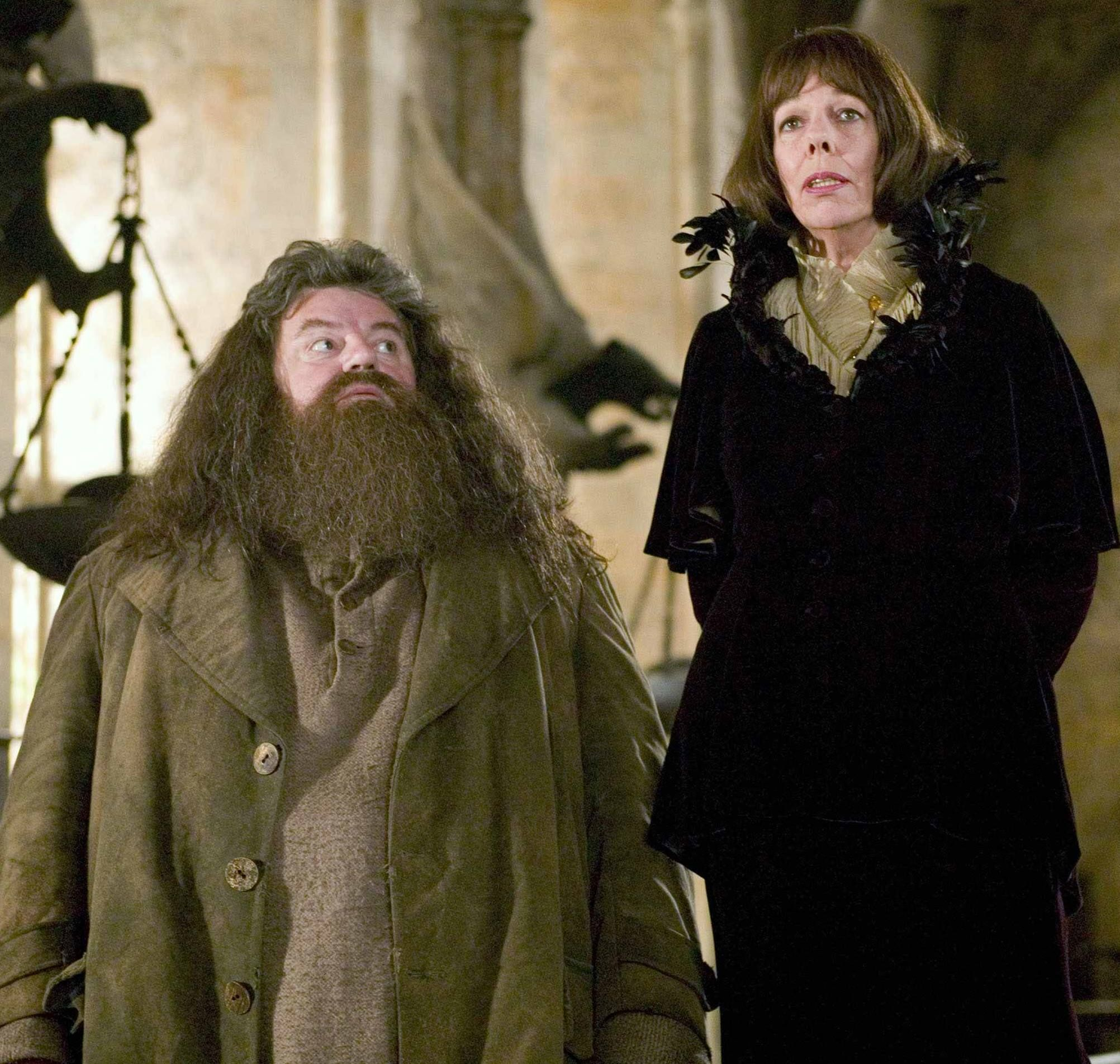 Goblet Of Fire Hagrid Madame Maxime Harry Potter Wiki Harry Potter Facts Harry Potter Goblet