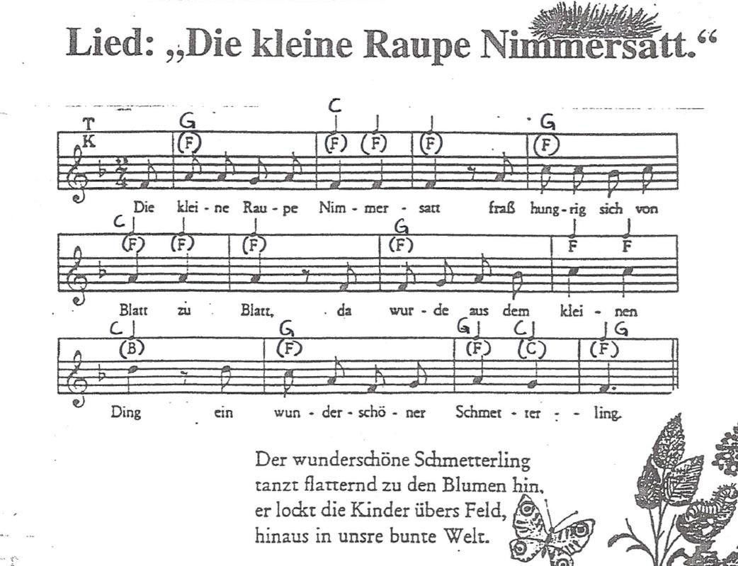 Die Kleine Raupe Nimmersatt Kindergarten Frühling Raupe