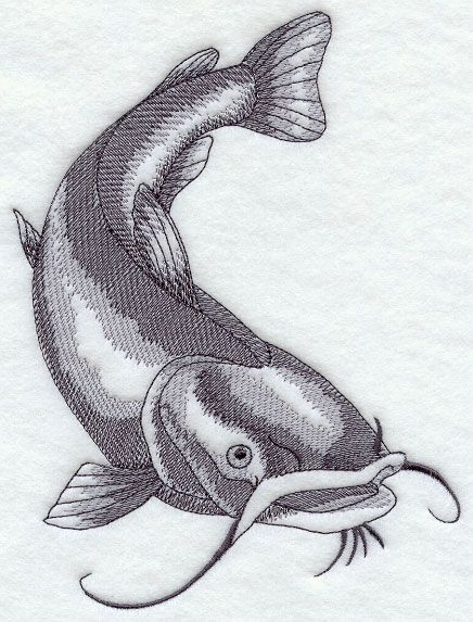 Flathead Catfish Sketch | Embroidery Designs | Catfish ...