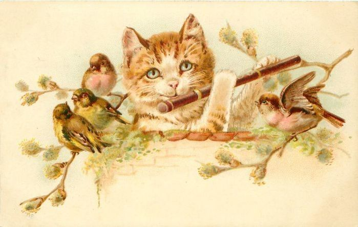 Надписью, открытка винтажная коты