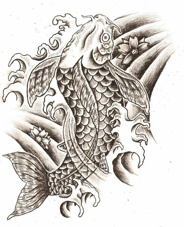 Tattoo Designs Black And White Koi Fish Tattoo Design Favorite