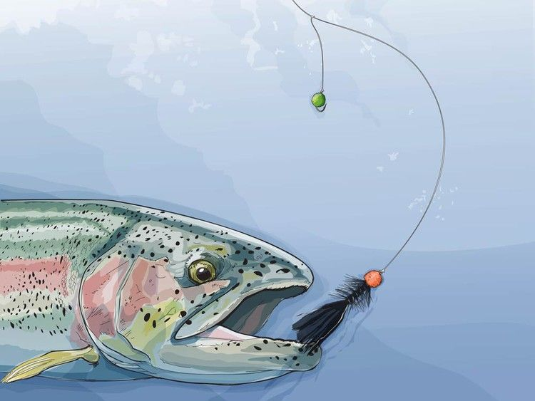 Double Fly Rigs for Winter Trout — Field & Stream | Fly fishing