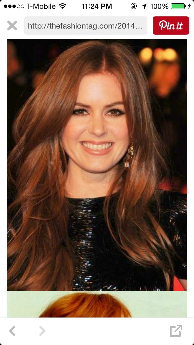 Red Chestnut Hair Creative Colour Pinterest Chestnut Hair
